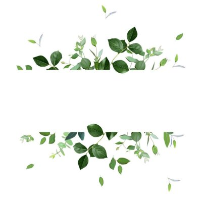 Sticker Herbal horizontal vector frame. Hand painted plants