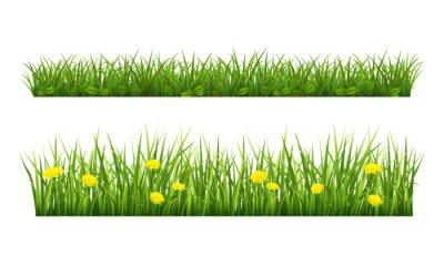 herbe d'été