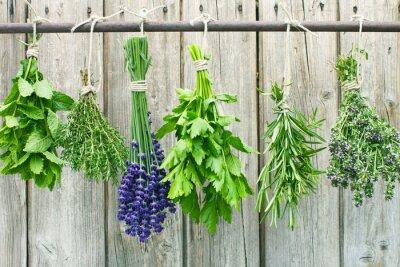 Sticker herbes
