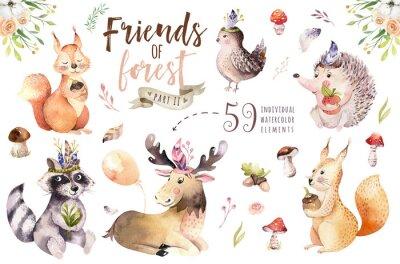 Sticker Hérisson de dessin animé bohème bébé mignon aquarelle, animal écureuil et orignal pour infirmière, illustration de forêt isolée de forêt pour les enfants. Lapins animaux.