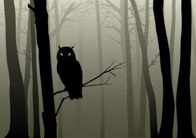 Sticker Hibou dans les bois brumeux