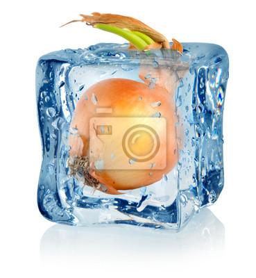 Ice cube et l'oignon