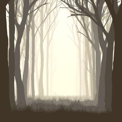 Sticker Illustration carrée clairière en forêt.