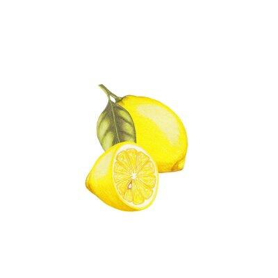 Sticker Illustration de citron