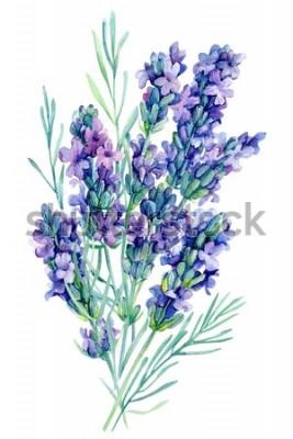 Sticker illustration de fleurs lavande bouquet aquarelle sur fond blanc isolé