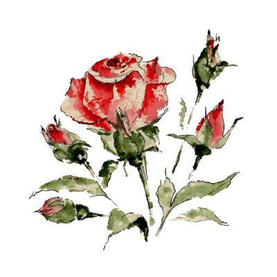 Sticker Illustration de rose rouge