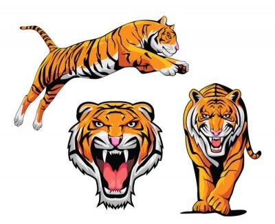 Sticker Illustration Tiger Set