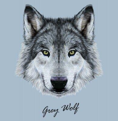 Sticker Illustration vectorielle numérique Portrait d'un loup.