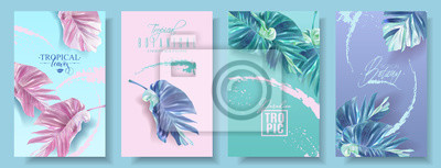 Sticker Jeu de bannières de vecteur de feuille d'alocasia tropic
