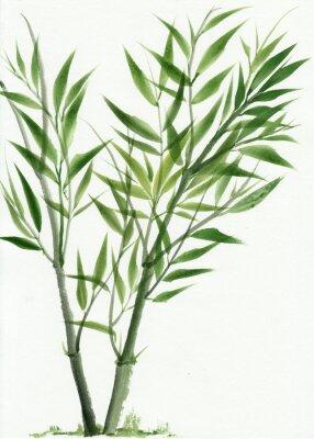 Sticker Jeune bambou vert