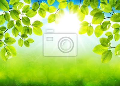 Jour solaire