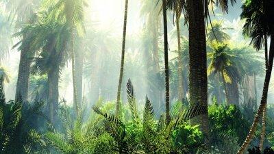 Sticker Jungle tropicale dans le brouillard. Palmiers dans la matinée.