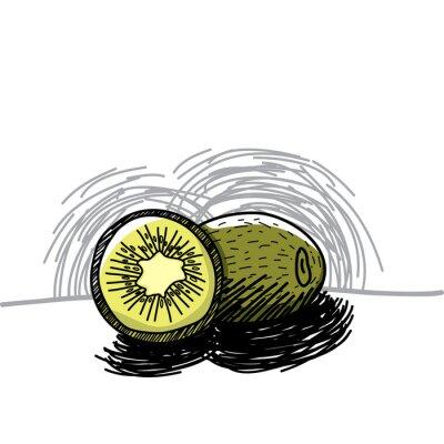 Sticker Kiwi avec de l'encre dessinés à la main-Vector illustration