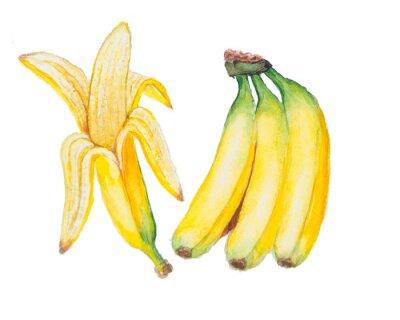 Sticker L'aquarelle Banana isolé sur le fond blanc