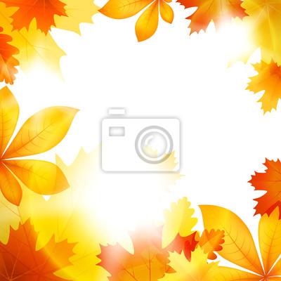 La chute des feuilles d'automne