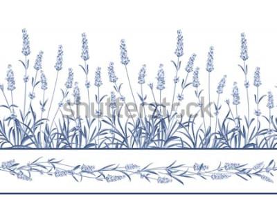 Sticker La ligne de cadre sans couture de lavande. Bouquet de fleurs de lavande sur fond blanc. Illustration vectorielle