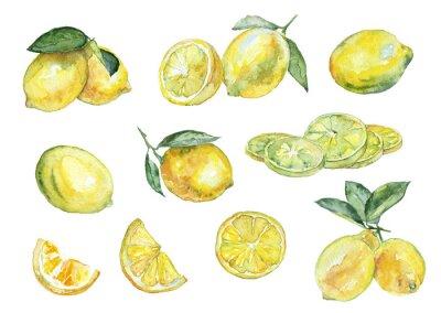 Sticker La peinture à l'aquarelle. Vintage ensemble de citrons.