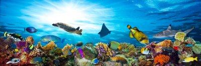 Sticker la vie sous la mer récif de corail panorama avec de nombreux poissons et animaux marins