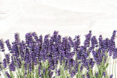 Sticker Lavender flowers over white wooden texture background