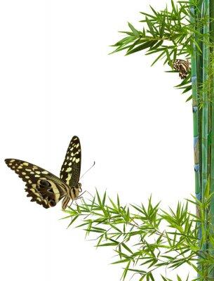 Sticker le concept de nature détente zen