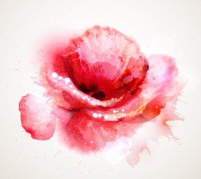 Sticker Le coquelicot rouge à fleurs