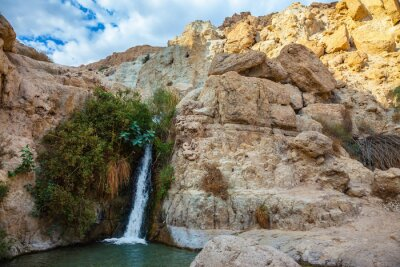 Sticker Le parc national et les réserves Ein Gedi, Israël