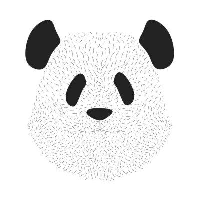 Le visage de Panda. Portrait d'animal