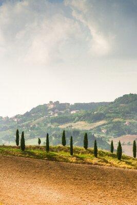 Sticker Les champs en Toscane