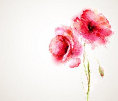 Sticker Les deux fleurs de coquelicots rouges. -Carte de voeux.