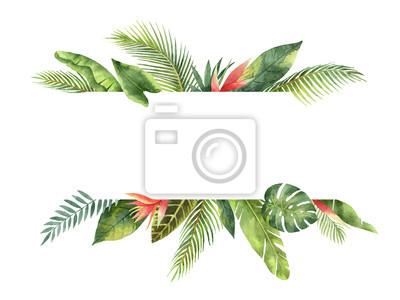 Sticker Les feuilles et les branches tropicales de la feuille d'aquarelle isolées sur fond blanc.
