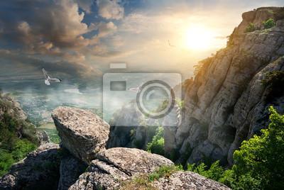 Les oiseaux et les rochers