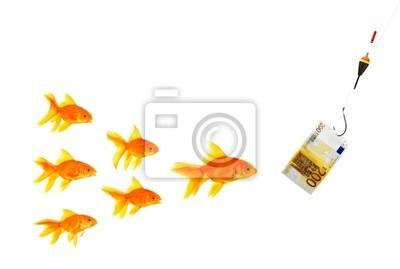 Les poissons rouges et de l'argent