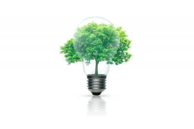 Sticker Light bulb with green tree inside isolated on white background. Green energy concept.