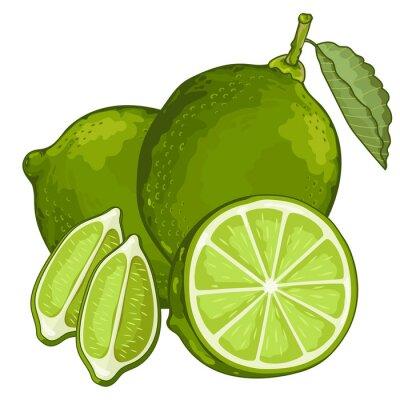Sticker Lime isolé sur fond blanc.