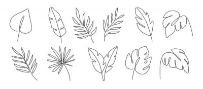 Sticker Line drawing vector leafs palm tree. Modern outline art style.