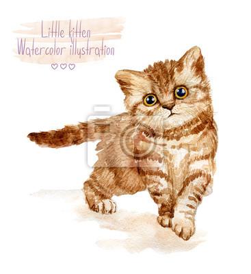 Little Fluffy kitten chat rouge tacheté. Aquarelle illustration de chaton.