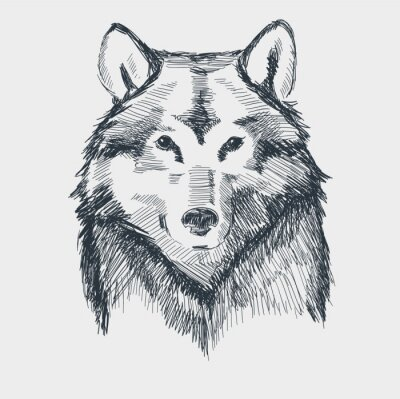 Sticker Loup tête grunge croquis dessiné à la main illustration vectorielle