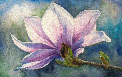 Sticker Magnolia fleur sur branch.Watercolors.