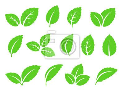 Sticker main dessinée abstrait menthe feuilles set icônes