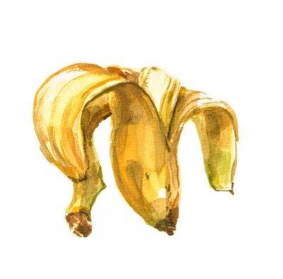 Sticker Main, peint, aquarelle, Illustration, banane