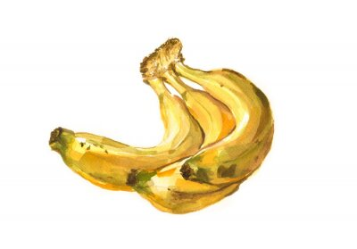 Sticker Main, peint, aquarelle, Illustration, bananes