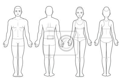 Sticker Male and female body chart