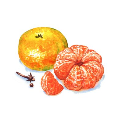 Sticker Mandarine ou mandarine fruits isolé sur fond blanc