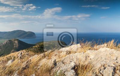 Mer Adriatique côtière paysage de montagne avec de l'herbe sèche sur un rocher