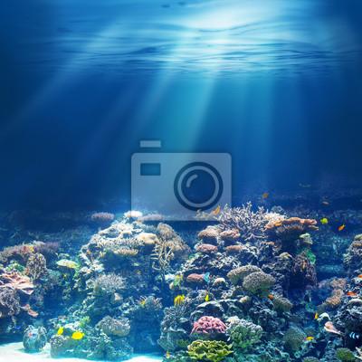 Sticker Mer ou l'océan récif corail sous-marin
