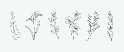 Sticker Minimal botanical hand drawing design for logo and wedding invitation. Floral line art.  Flower and leaves design collection for bouquets decoration, card and packaging background.
