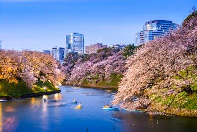 Sticker Moat impérial de Tokyo au printemps