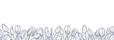 Sticker Modèle de bannière plat horizontale avec tulipes de contour sur fond blanc