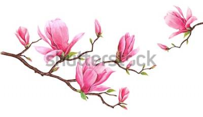 Sticker Modèle de carte avec magnolia aquarelle. Peinture à la main sur fond blanc. Illustration pour cartes de vœux, invitations et autres projets d'impression. Il y a de la place pour mettre votre messa