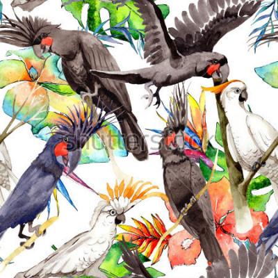 Sticker Modèle de perroquet ara blanc oiseau ciel dans une faune de style aquarelles. Liberté sauvage, oiseau aux ailes volantes. Aquarelles Oiseau pour le fond, la texture, le motif, le cadre, la bordure ou